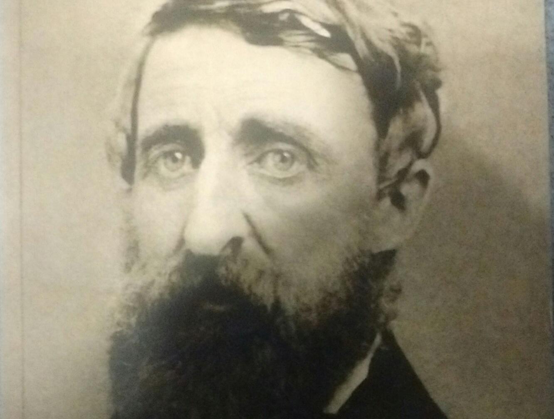 Henry David
